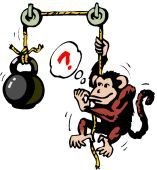 Monkey Idea