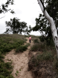 Walk to the dune climb