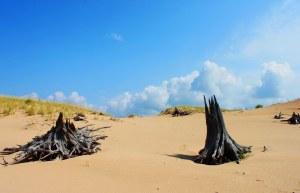dune ride