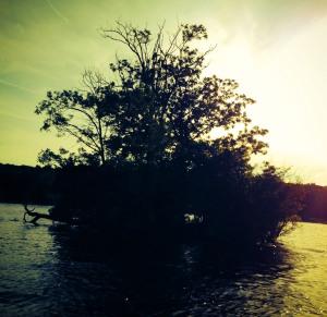 Junk Island