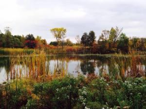 Botanical Gardens Ann Arbor